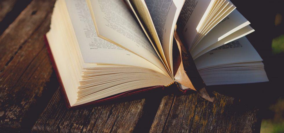 Lesbische Romane Busenfreundin Buch Ranking